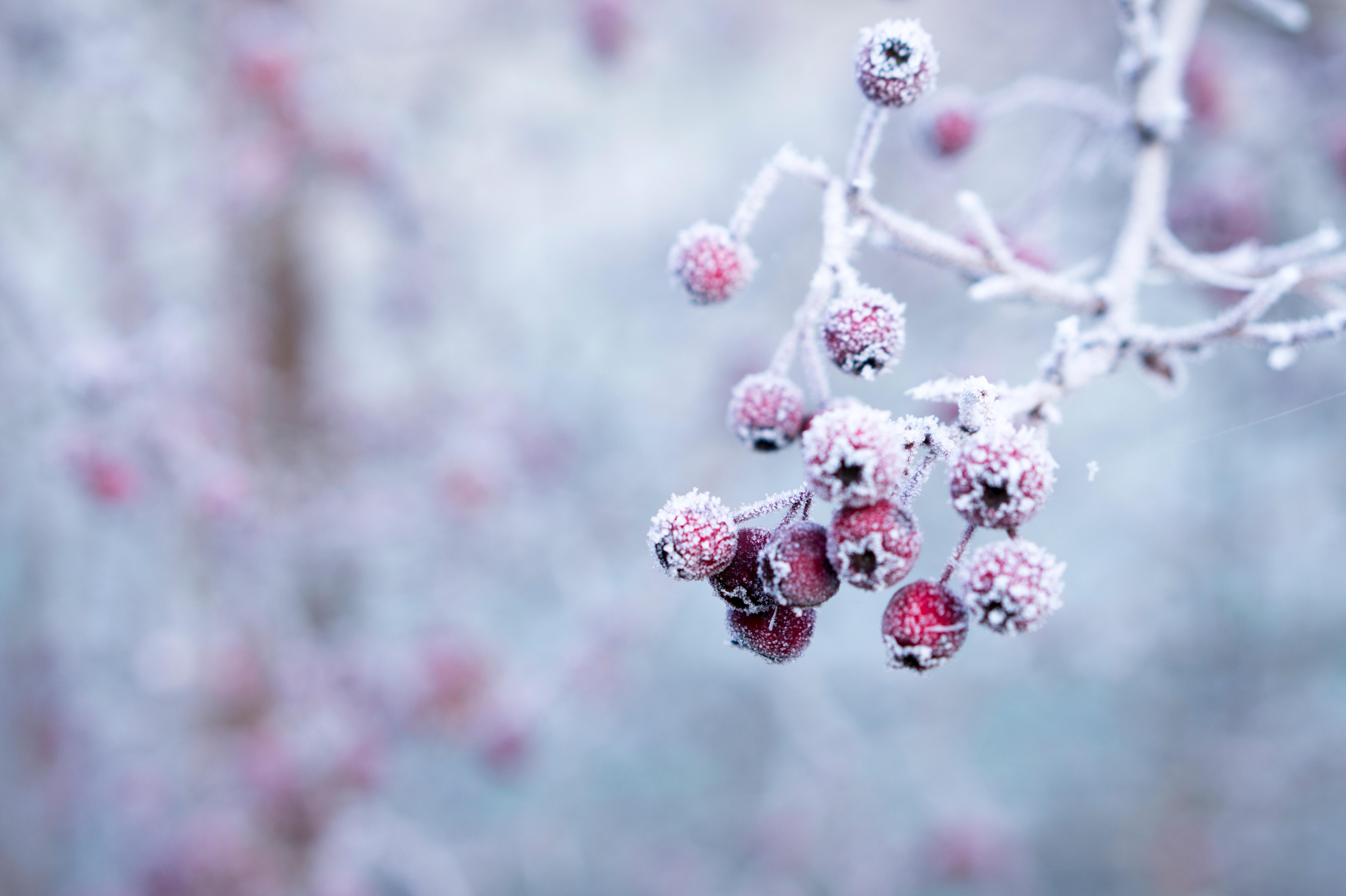 4 wunderschöne winterliche Bastelideen